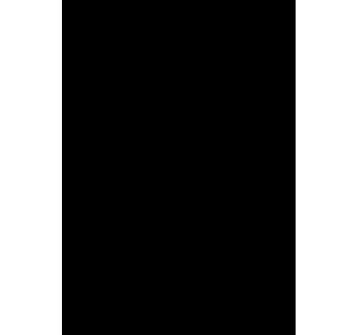 sketch mongolfiera in volo